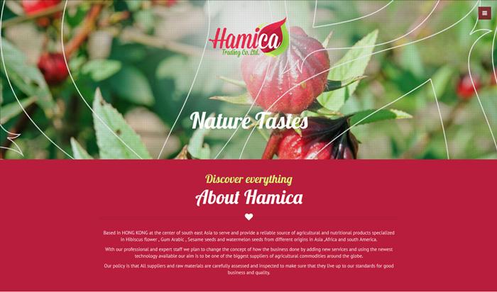 Hamica Trading Co. Ltd